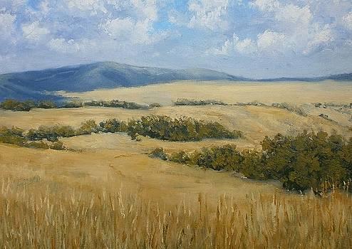 Summer landscape by Yaroslav Kuvshinov