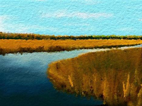 Summer Marsh South Carolina Lowcountry by Anthony Fishburne