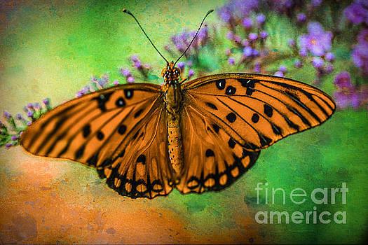 Summer Orange by Lynn Sprowl