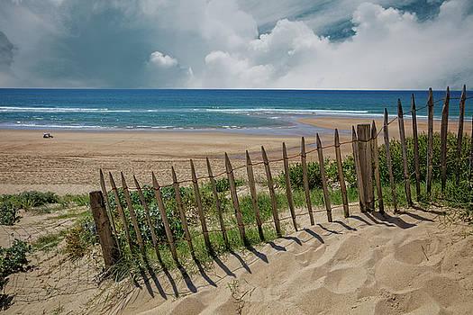 Summer Sand Dunes by Debra and Dave Vanderlaan