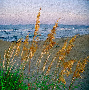 Summer sea grass breeze by Anthony Fishburne