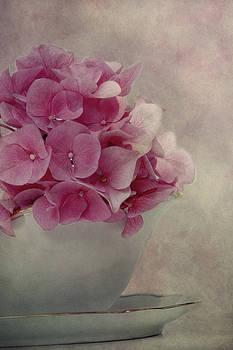 Summer secret by Claudia Moeckel