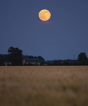 Summer Solstice Moonrise by Cale Best