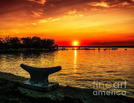 Nick Zelinsky - Summer Sunset at the Riverview