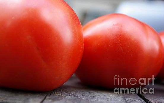 Summer Tomatoes  by John S