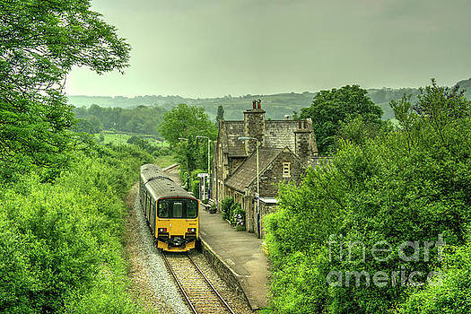 Summertime at Umberleigh  by Rob Hawkins
