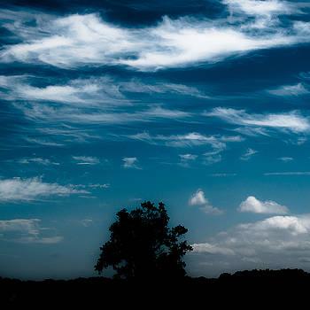 Summertime Skies 001 by Noah Weiner