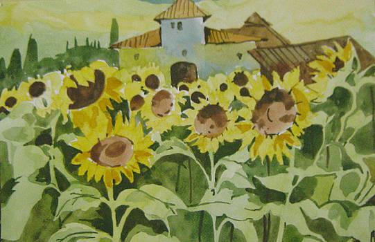 Sun Flowers by Akhilkrishna Jayanth