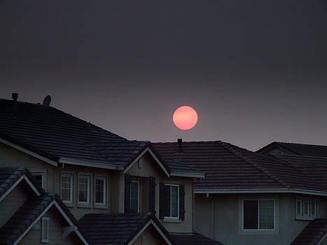 Donna Blackhall - Sun Has Gone Dark