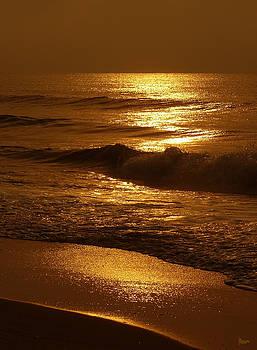 Sun Kissed by Jeff Breiman