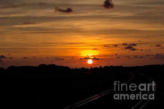 Sun on the Tracks by Kathryn Bell