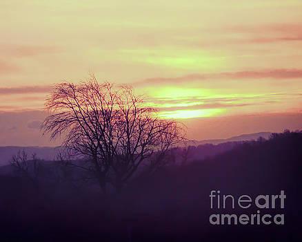 Sun Rising by Kerri Farley