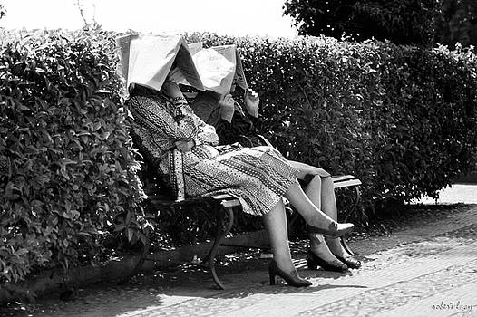 Robert Lacy - Sun-shades