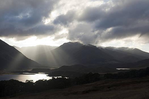 Sunbeams in Glen Affric by Sue Arber