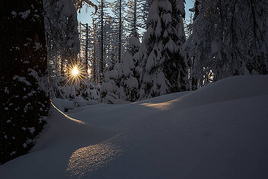 Sunburst in winter fairytale forest Harz by Andreas Levi