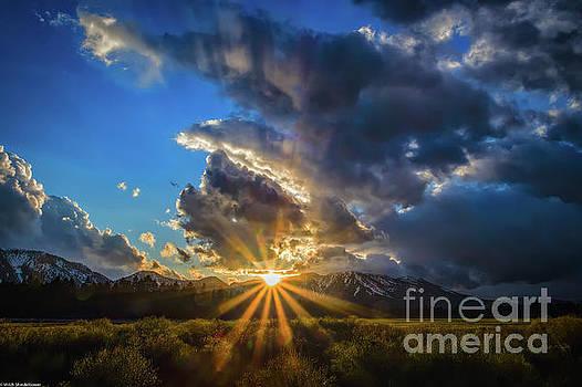 Sunburst by Mitch Shindelbower