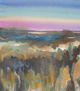 Sundown Into Marsh Grass by Lisa Fatone