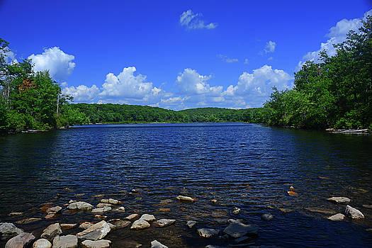 Raymond Salani III - Sunfish Pond