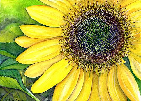 Sunflower by Elaine Hodges