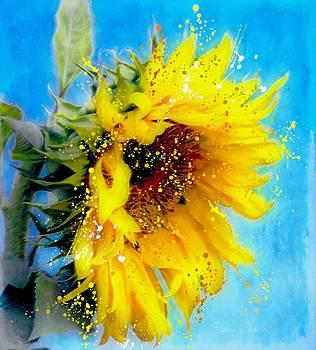 Sunflower Essence by Barbara Chichester