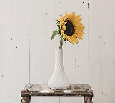 Sunflower Essence by Kim Hojnacki