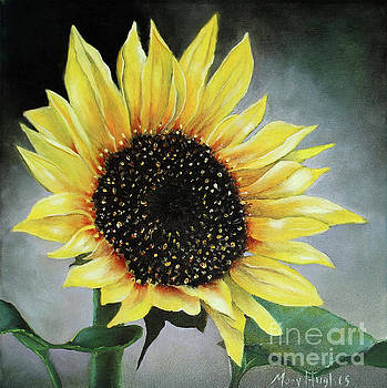 Sunflower by Mary Hughes