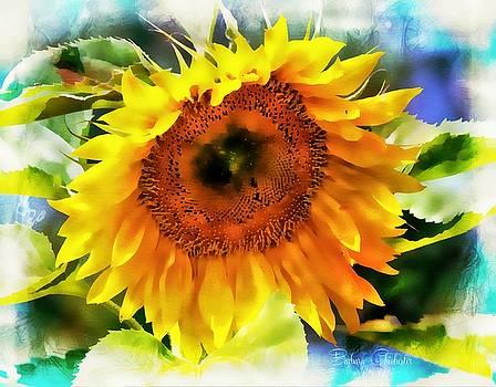 Sunflower Splendor by Barbara Chichester
