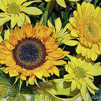 Sunflowers 2 by Mark Orr