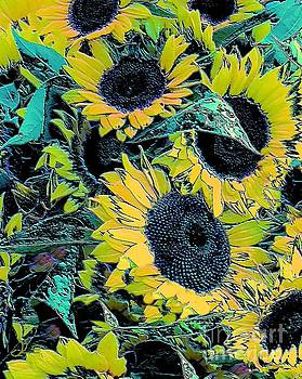 Sunflowers Galore by Diana Chason