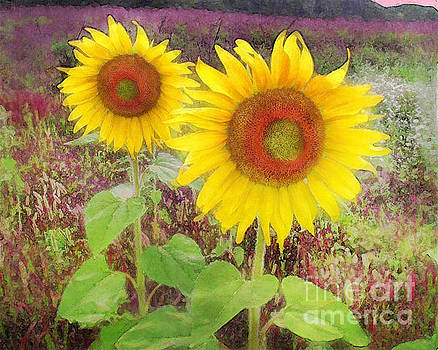 Sunflowers morning pinks by Gina Signore