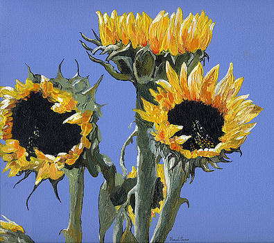 Sunflowers One by Marla Saville