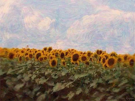 Sunflowers by Robin Regan