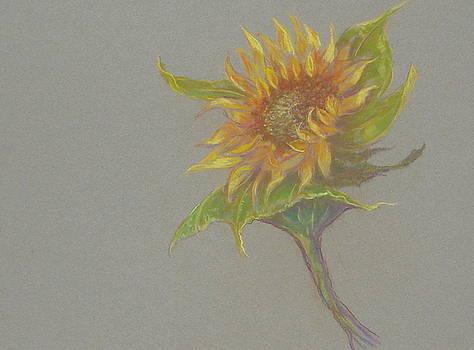 Sunflowers Tuscany Image of Summer II by Phyllis OShields