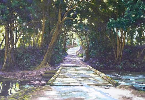 Sunlight and Shadow Lansdowne River by Louise Green