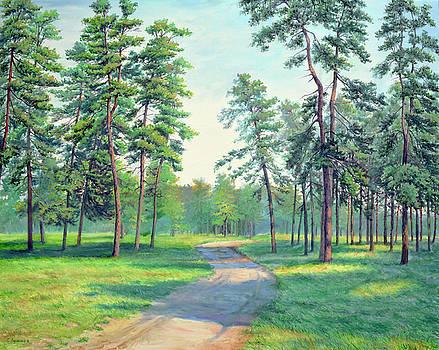 Sunny day by Sergey Lutsenko