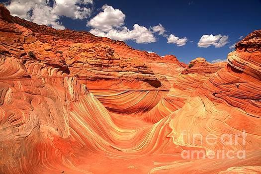 Adam Jewell - Sunny Northern Arizona Landscape