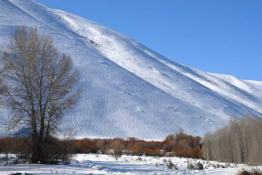 Sunny Valley winter 5 by Rich Caperton