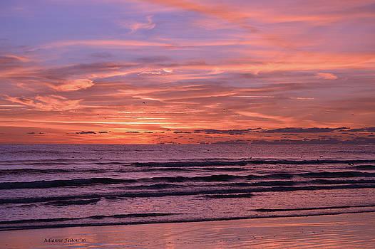 Sunrise 2  10-25-16 by Julianne Felton