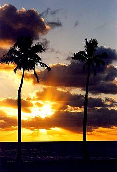 Sunrise-23 by Denise Moore