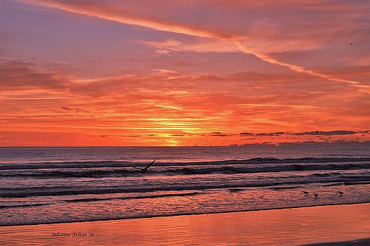 Sunrise 3 10-25-16 by Julianne Felton