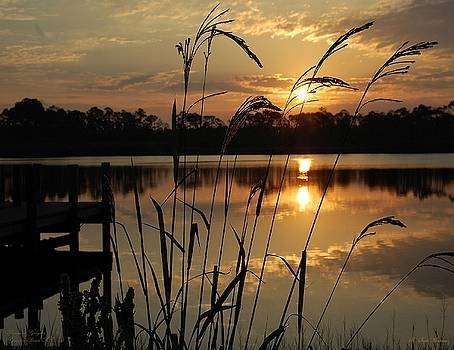 Sunrise at Grayton Beach by Robert Meanor