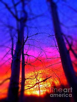 Sunrise by France Laliberte