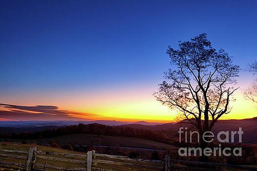 Dan Carmichael - Sunrise Glow in Autumn
