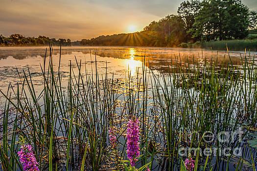Sunrise Kent Lake by Patrick Shupert
