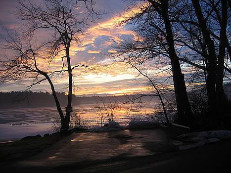 Sunrise  by Lyn Vic