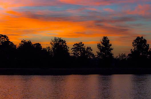 Sunrise Magnolia Texas by Bob Marquis