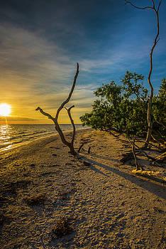 Sunrise On Lighthouse Beach by Steven Ainsworth