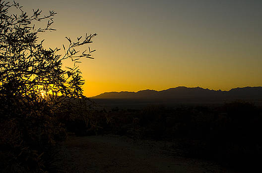 Sunrise over Cochise by Sheri Heckenlaible
