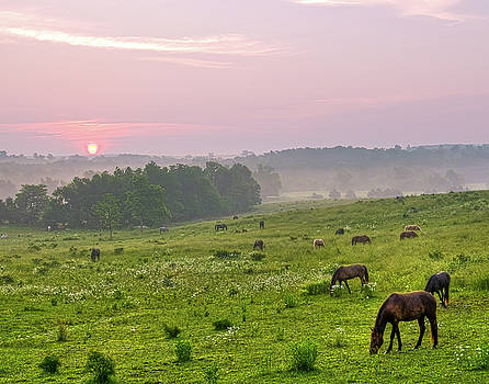 Sunrise over the Valley of the Horse by Ron  McGinnis