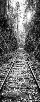 Debra and Dave Vanderlaan - Sunrise Rails Black and White Vertical Panorama